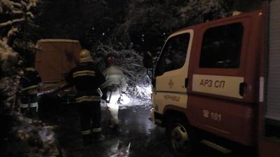 Негода у Чернівцях повалила дерева на дороги (ФОТО)