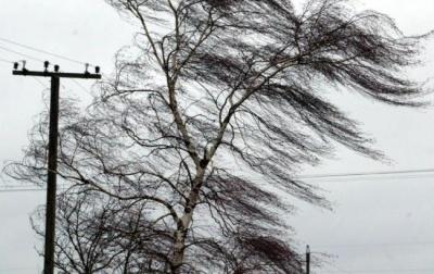 У Чернівецькій області 6 грудня прогнозують сильні пориви вітру