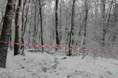 На Львівщині у лісі знайшли тіла батька та сина