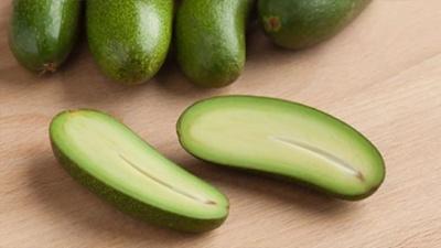 Вирощено сорт авокадо без кісточки