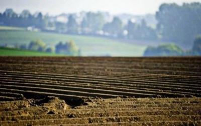 МінАП заявило про готовність земельного кадастру до запуску ринку землі