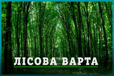 """Друга річниця """"овечок"""" та """"Лісова варта"""": анонси на 14 грудня у Чернівцях"""