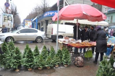 Новорічне деревце - від 70 гривень: скільки коштуватимуть живі та штучні ялинки у Чернівцях