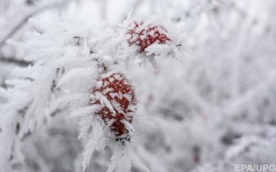 До України йдуть морози, місцями очікуються сильні хуртовини