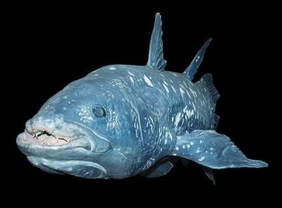 Цей день в історії: винайдення електрогірлянди та риба, якій 360 мільйонів років