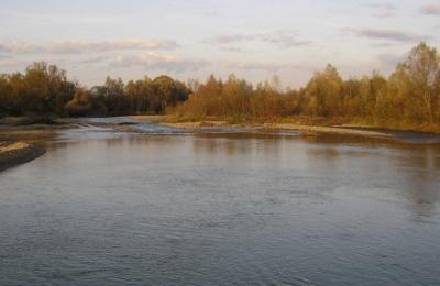 У річках Буковини - незначні коливання рівнів води