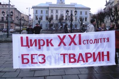 У Чернівцях міськрада не підтримала е-петицію про заборону діяльності шапіто з тваринами у місті