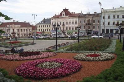 У Чернівцях міськрада підтримала е-петицію щодо відновлення зелених насаджень на Центральній площі