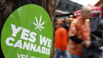 У Каліфорнії узаконили марихуану