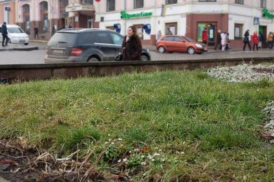 """""""Зима тепла, але рекордів не побила"""", - синоптики про нинішню погоду на Буковині"""