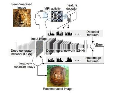 Японці навчили штучний інтелект читати думки