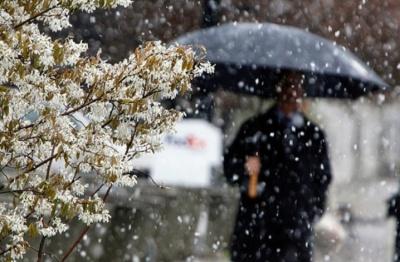 Синоптики розповіли, коли на Буковину прийде зима