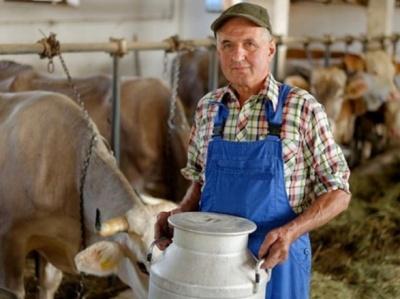 Закупівля молока у населення буде продовжуватися, - Мінагрополітики