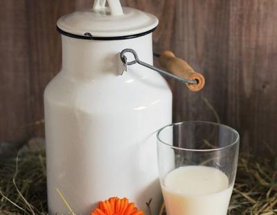 Гройсман проти заборони закупівлі молока у населення