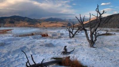 Учені попередили про зникнення людства внаслідок кліматичних змін