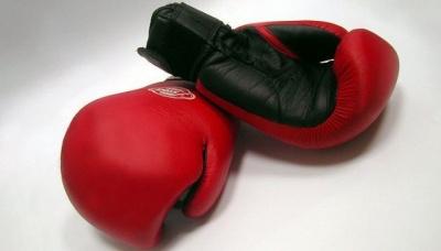 У Швеції можуть заборонити заняття професійним боксом