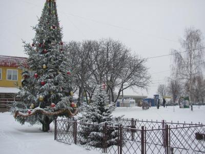 Чернівці засипало снігом (ФОТО)
