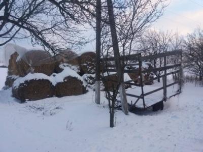 На Харківщині жінка покинула на морозі двомісячну дитину