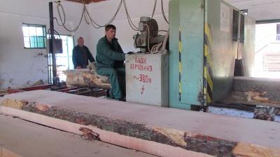 Лісгосп на Буковині відкрив деревообробний цех