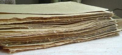 Юний буковинець створив папір з кукурудзи і лопуха