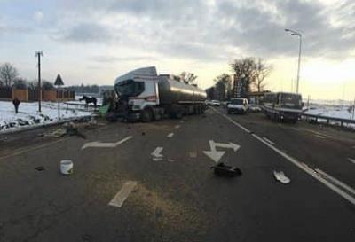 У ДТП на Львівщині загинув цирковий кінь