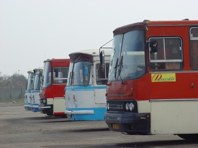 Влада порахувала автобуси, які перевозять буковинців