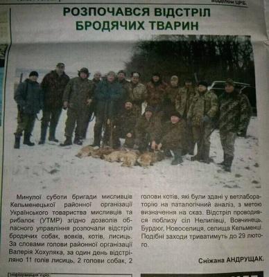 Мережу обурила публікація про відстріл бродячих тварин у районній газеті Чернівецької області
