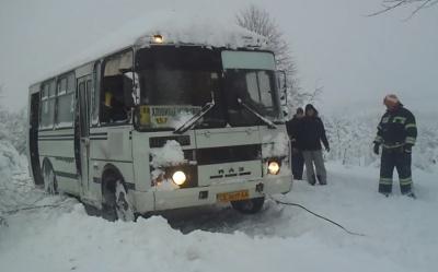 На Буковине из-за снежной стихии маршрутка съехала в кювет (ВИДЕО)