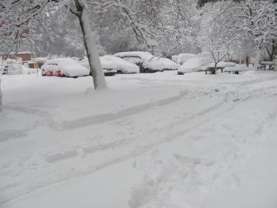 Найбільше снігу у Чернівцях, найменше — у Кельменцях