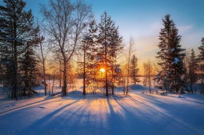 На Буковині сніг припинився, але буде похолодання