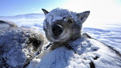 Прогноз погоди на 11 лютого: на Заході - холодно, а на Південь України насуваються сильні опади