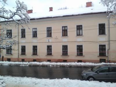 Комунальники розповіли, як борються з бурульками у центрі Чернівців
