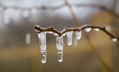 Зима відступає: синоптики розповіли, якою буде погода на Буковині 16 лютого