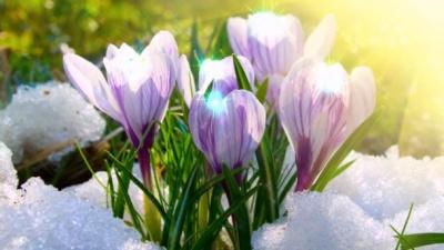 Синоптики розповіли, коли прийде весна