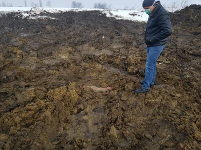 Поліція відкрила кримінальне провадження за фактом виявленого на Буковині стихійного скотомогильника