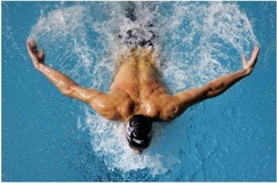Буковинські плавці здобули медалі у Дніпрі