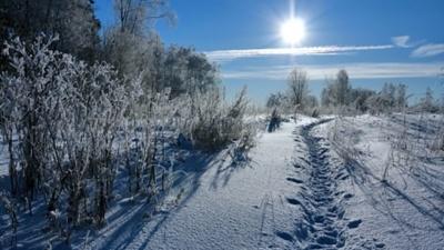 На Буковині температура знизиться до 27 градусів морозу