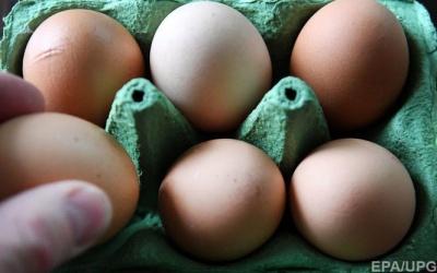 В Україні суттєво подорожчали яйця і м'ясо