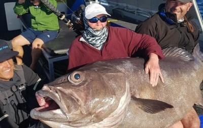 В Австралії літня жінка зловила рибу-гіганта