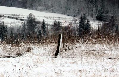 На Буковині у снігу знайшли тіло літнього чоловіка