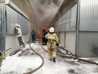 Масштабна пожежа на Калинці: площа займання сягає понад 500 «квадратів»