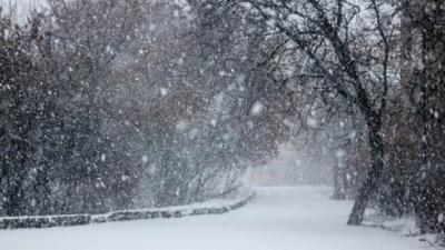 Прогноз погоди на 20 березня: снігопади та морози тривають