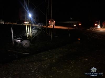На Буковині «БМВ» врізалось в підводу: загинув кінь, ще двоє осіб травмовані