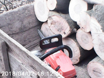 На Буковині затримали чоловіка, який незаконно вирубував дерева