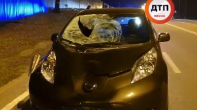 Під Києвом авто на великій швидкості збило насмерть молодого хлопця: відео 18+