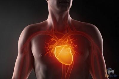 Незабаром українці зможуть безкоштовно перевірити серце