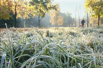 В Україні очікуються заморозки