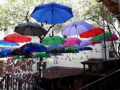 Черга за фото у дворику. У Чернівцях з'явилося небо із кольорових парасольок (ФОТО)