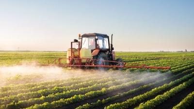 На Буковині сім'я отруїлась невідомою речовиною: ймовірно, пестицидами