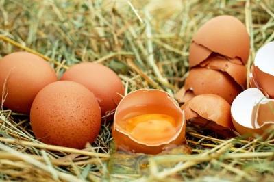 Україна випередила США і стала лідером з експорту яєць в ЄС